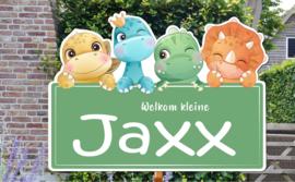 Geboortebord Jaxx - baby dino's groen bordje
