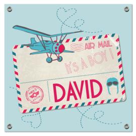 Spandoek David