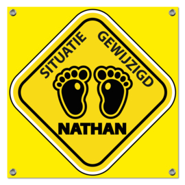 Spandoek Nathan