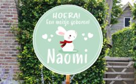 Geboortebord Naomi - schattig konijntje haasje mintgroen hartjes