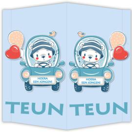 Raambord Teun - geboortebord raam beertje ballon auto mutsje