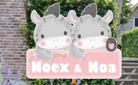 Geboortebord Noex & Noa - schattige zebra's met bloemen naambordje