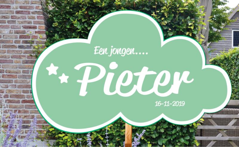 Geboortebord Pieter - wolkje met sterretjes geboortedatum - Een jongen....