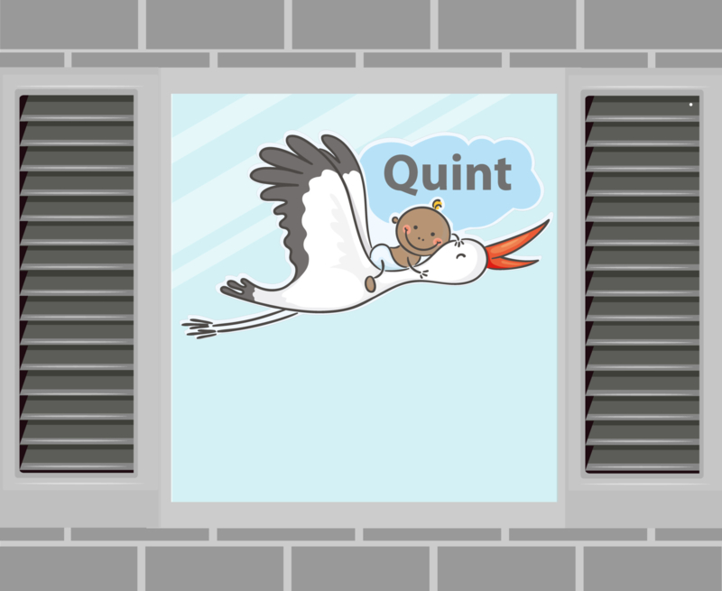 Raamsticker Quint
