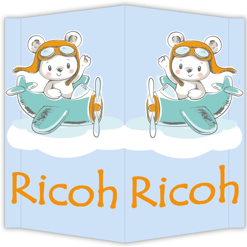 Raambord Ricoh - geboortebord raam beerte vliegtuig piloot