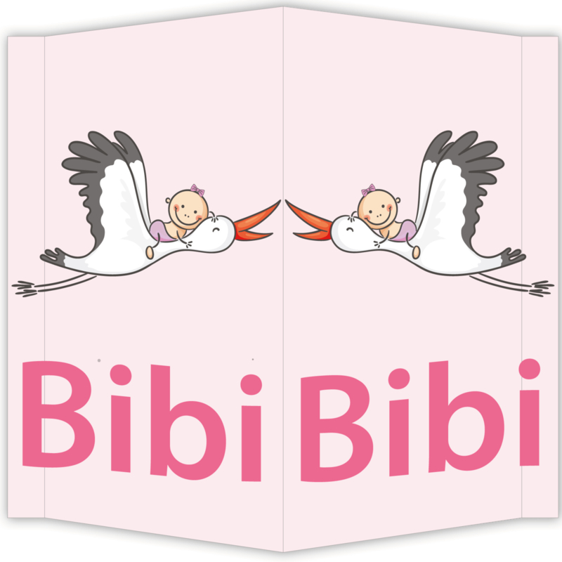 Raambord Bibi