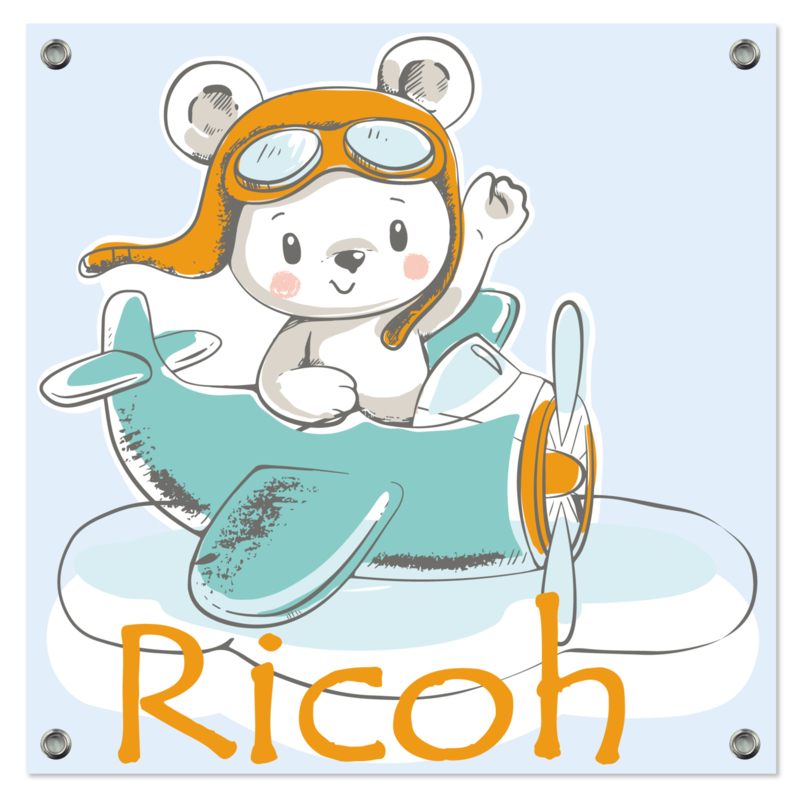 Spandoek Ricoh