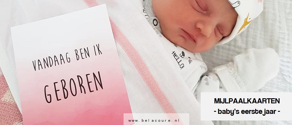 Mijlpaalkaarten baby's eerste jaar