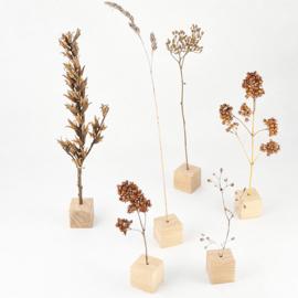 6 Tafelblokjes voor droogbloemen / takjes