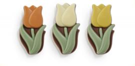 Zakje met tulpen