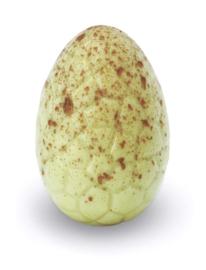 Zakje met pistache eitjes