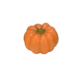 Zakje met pompoenen oranje