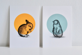 A4 Poster Pinguin - Letterpers