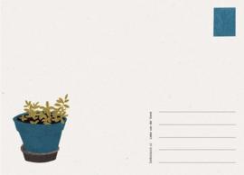 Postkaart Wanten - Liekeland