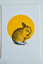 A4 Poster Konijn - Letterpers