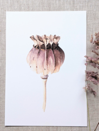 A5 Prent Papaver - Artwork by Madelon
