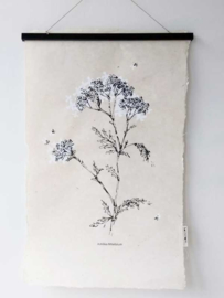 Wall-Art White Flower - SAGSTROM&co