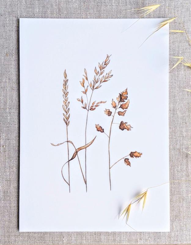 A5 Prent Grassen - Artwork by Madelon