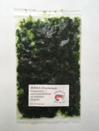 Shrimpfood zeesla 50 gram (eenheid: 1)