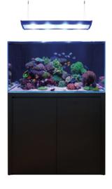 Blue Marine Reef Aquarium 350