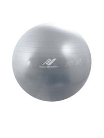 Gymnastiekbal met oefeningen, diameter 65 cm (32004-885)