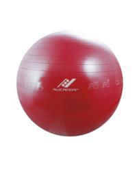Gymnastiekbal met oefeningen, diameter 75 cm (32005-501)