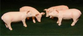 4 varkens - KG571905 - Kids Globe Schaal 1:32