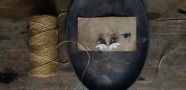 Zilveren blaadjes oorstekers