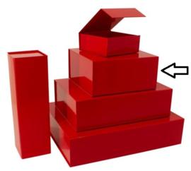 Luxe magneetdoos Rood glans (Square) Doos 10 stuks