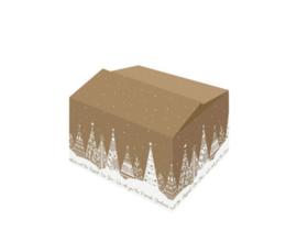 Eco-look kerstpakketdoos (M)