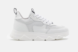 Steve Madden Pitty sneaker white