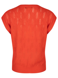 Ydence spencer Lynn Coral red