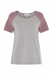 Noisy May Gradu Short Sleeve Raglan T-shirt Grey Pink Slee