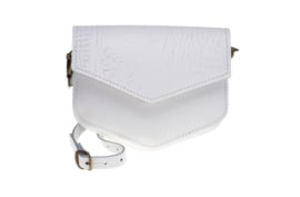 Elvy Kelly Croco Bag