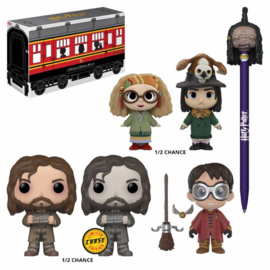 Funko Pop! Harry Potter Collector Mystery Hogwarts Limited Edition (normale niet CHASE versie)