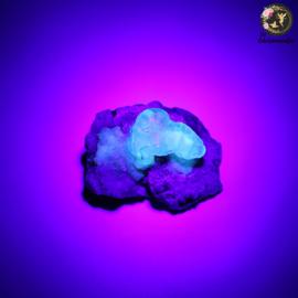 Hyaliet Opaal op Matrix nr. 22