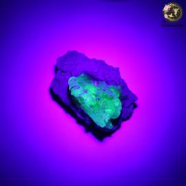 Hyaliet Opaal op Matrix nr. 26