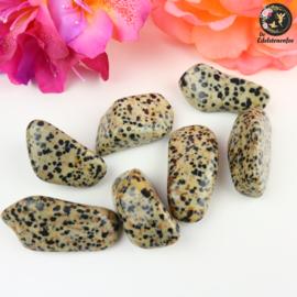 Dalmatiër Jaspis trommelstenen Maat 3
