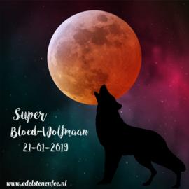 Blog Super Bloed-Wolfmaan