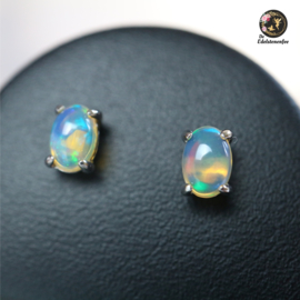 Welo Ethiopische Opaal Oorstekers AAA kwaliteit