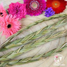 Sweet Grass Vlecht