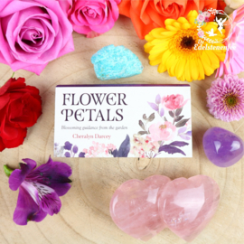 Flower Petals - Mini Cards