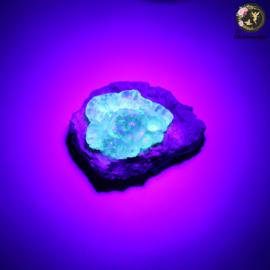 Hyaliet Opaal op Matrix nr. 29