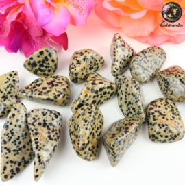 Dalmatiër Jaspis trommelstenen Maat 2