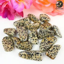 Dalmatiër Jaspis trommelstenen Maat 1