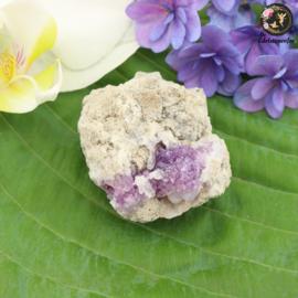 SPECIAL!! Spirit Flower nr. 44