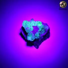 Hyaliet Opaal op Matrix nr. 24