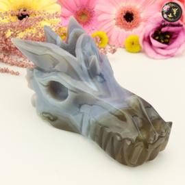 Draken Schedels en Sculpturen