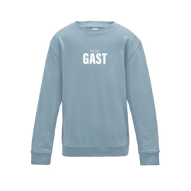 kids sweaters WIJZE GAST