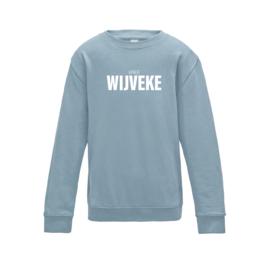 kids sweaters VREE WIJVEKE